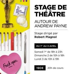 """Stage Théâtre """"Andrew Payne"""" dirigé par Robert Plagnol"""