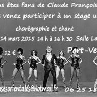 stage danse claude françois