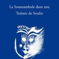 La Somnambule dans une Traînée de Soufre, de Catherine Gil Alcala