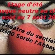 Stage du masque neutre au clown du 3 août au 7 août 2015