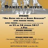 """Stage """"Une Autre idée de la Danse Africaine"""""""